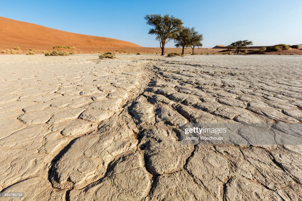 Cracked earth in dried lake bed in desert landscape : Foto stock