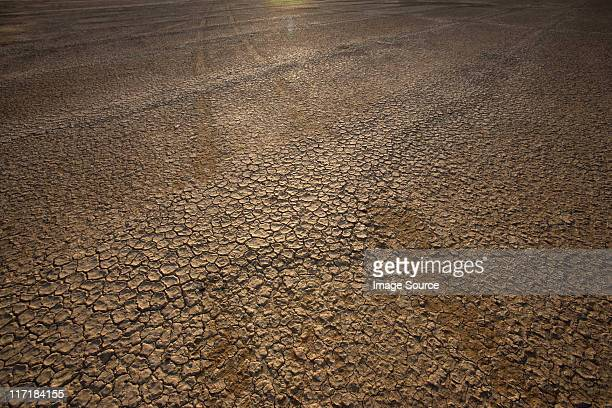 Cracked earth, Northern Cape, South Africa