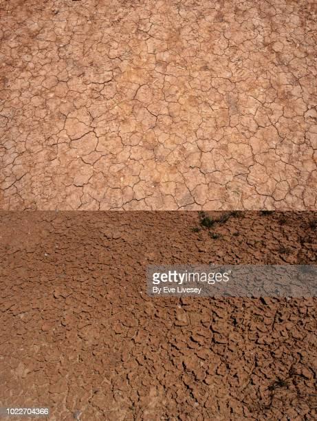 cracked earth - flussbett stock-fotos und bilder
