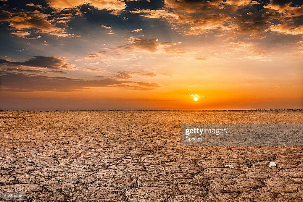 Cracked earth soil sunset landscape : Stock Photo