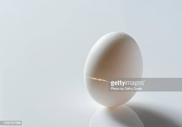 cracked egg - hatching stock pictures, royalty-free photos & images