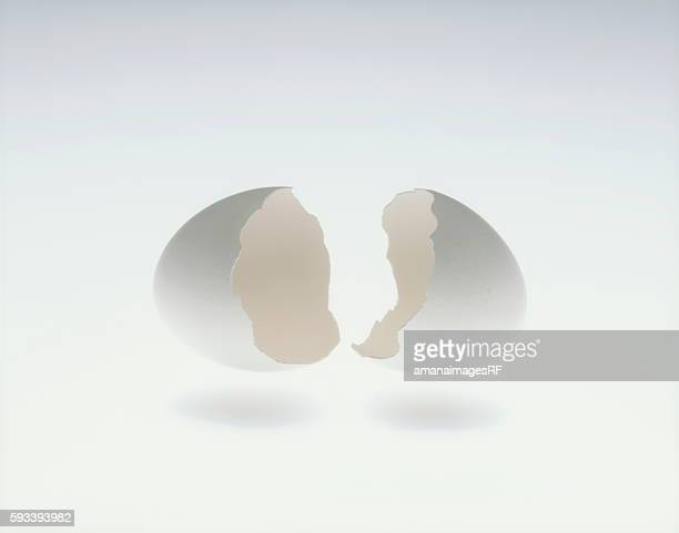 Cracked egg, white background