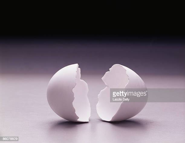 Cracked eggshell
