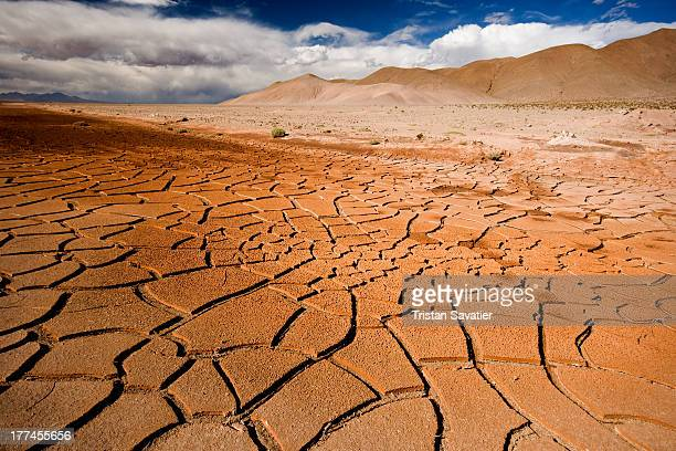 CONTENT] Cracked mud in desert dry weather