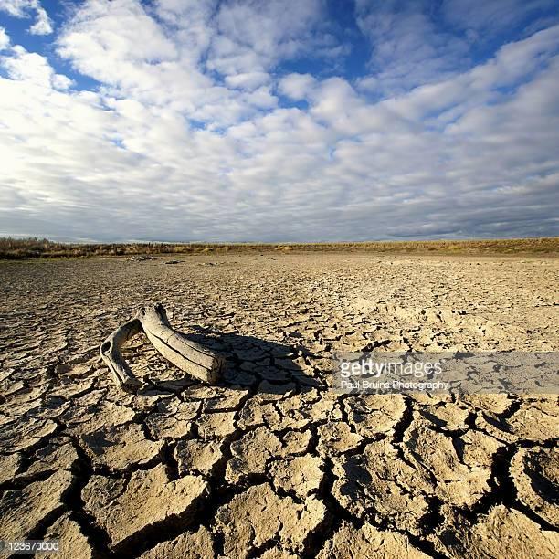 Cracked mud in dry farm dam