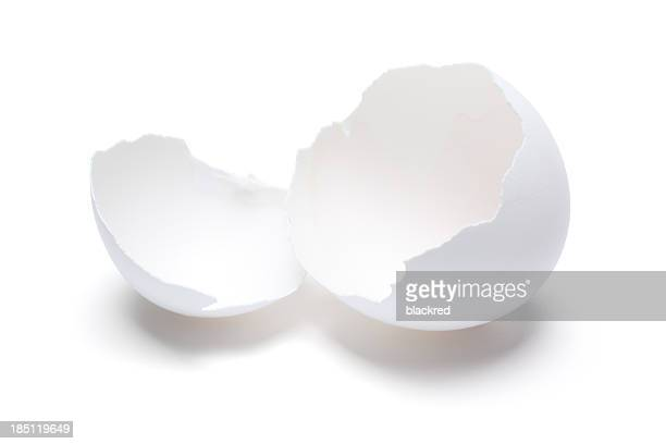 Cracked Open Egg Shell
