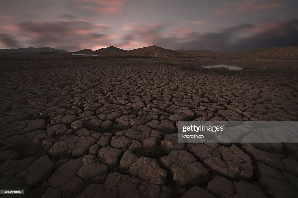 Cracked soil landscape : Stock Photo