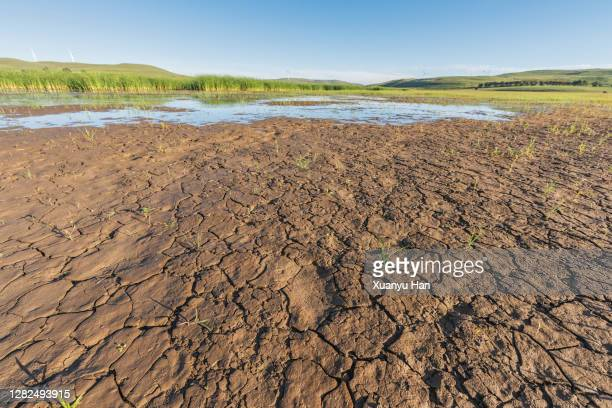cracked soil - lake bed stock pictures, royalty-free photos & images