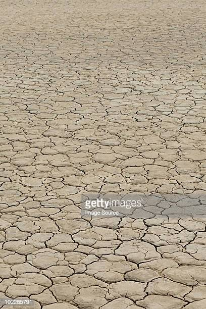 cracked surface of dry lake bed - el mirage dry lake stock photos and pictures