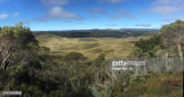 Cradle Mountain-Lake St Clair National Park Tasmania Australia