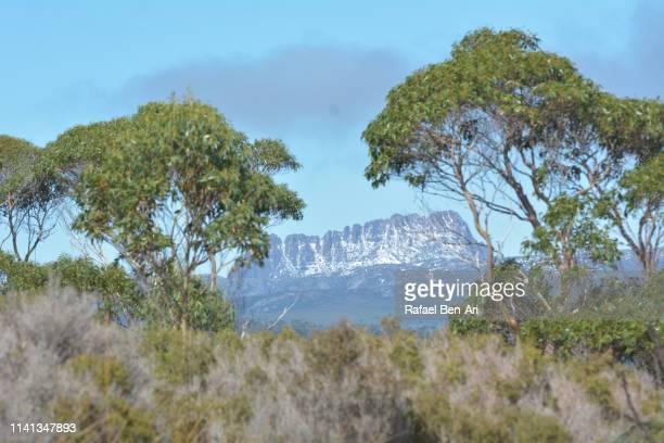 cradle mountain-lake st clair national park tasmania australia - rafael ben ari stock-fotos und bilder