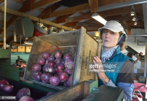 Craft brewers and distillers are working with local orchards like Hope Orchard in Hope who can provide provide fresh apple cider Emily Davis dumps a...