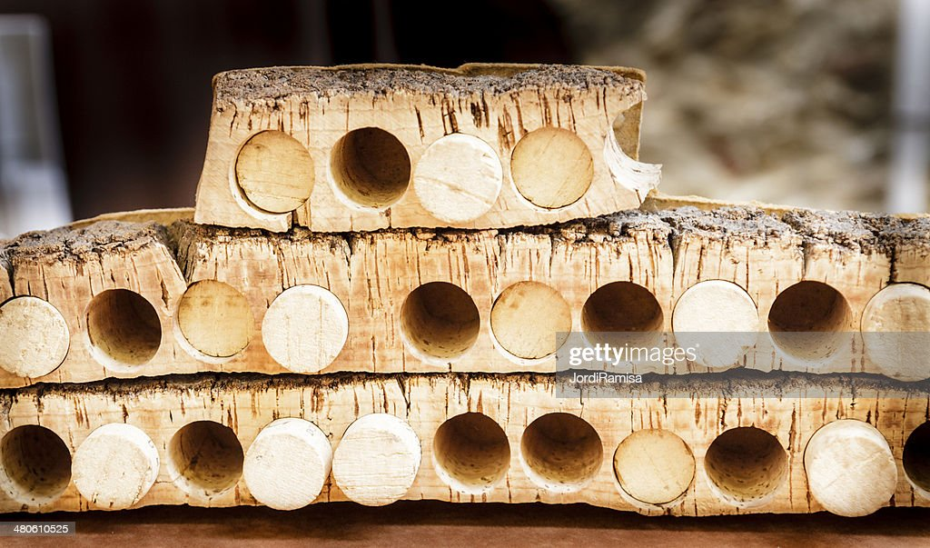 Craft industry of cork stoppers : Stock Photo