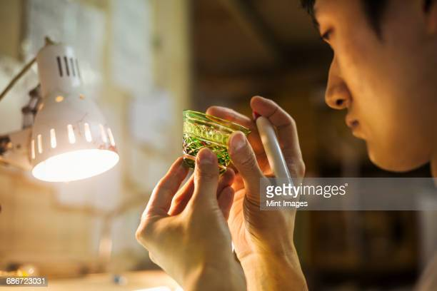 a craftsman at work in a glass makers studio workshop, inspecting a small glass bowl against a beam of light, holding a pen.  - craft product stock pictures, royalty-free photos & images