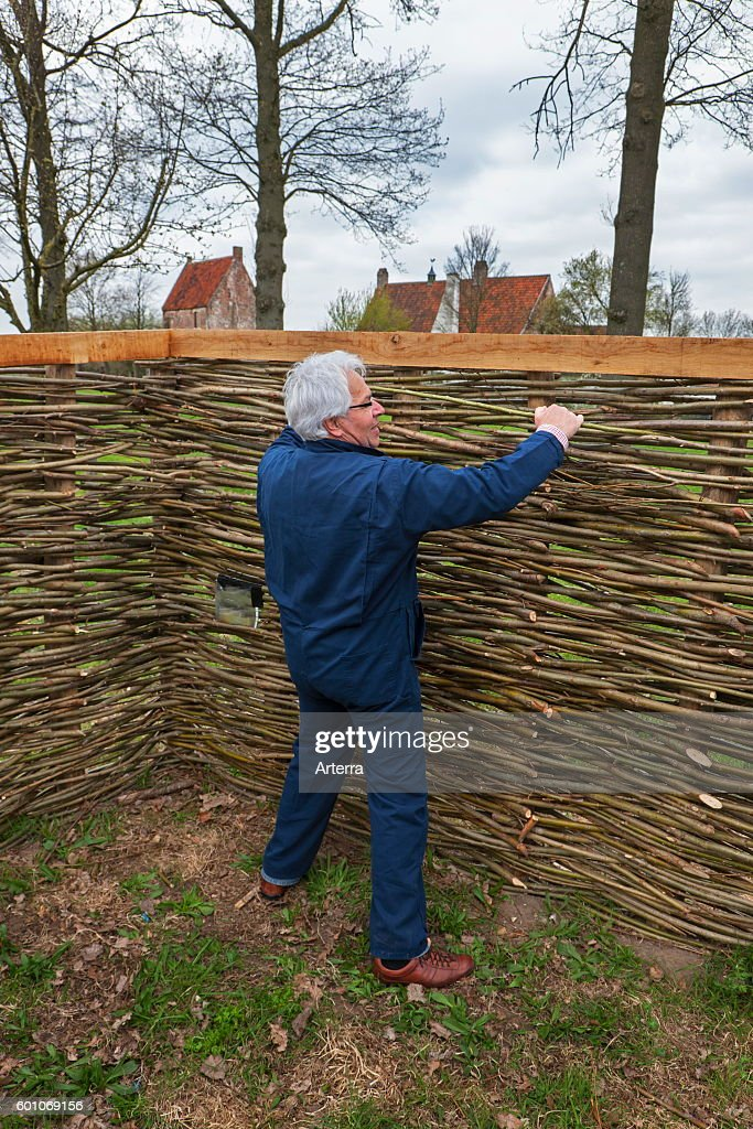 Craftsman Making Traditional Wattle Fence By Weaving Thin Willow News Photo Getty Images