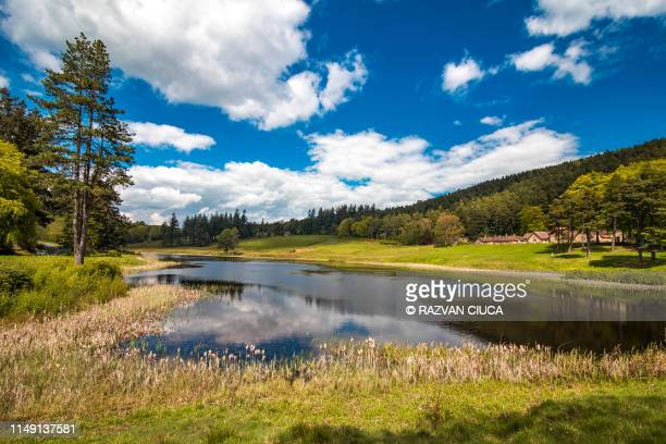 cragside - tumbleton lake - northumberland stock pictures, royalty-free photos & images