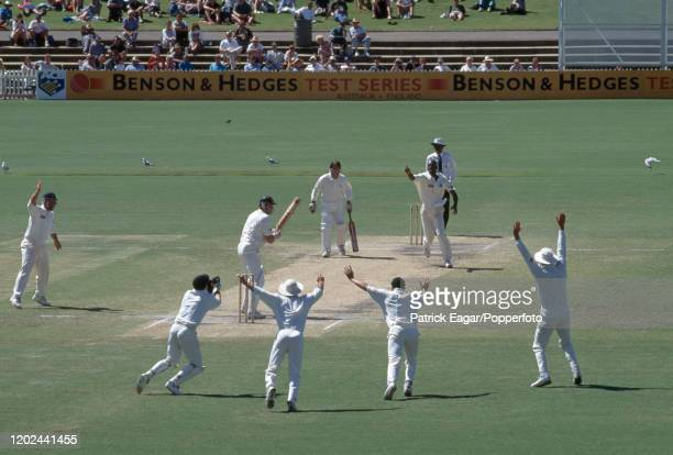 Craig McDermott of Australia is caught behind for 0 by England wicketkeeper Steve Rhodes off the bowling of Chris Lewis during the 4th Test match...