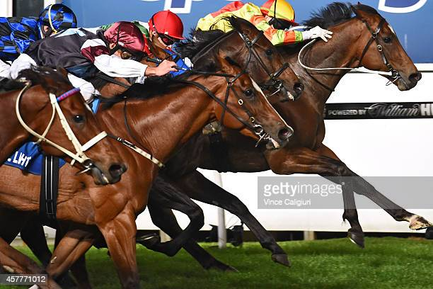 Craig Newitt riding Lankan Rupee winning Race 7 the Sportingbet Manikato Stakes during Manikato Stakes Night at Moonee Valley Racecourse on October...