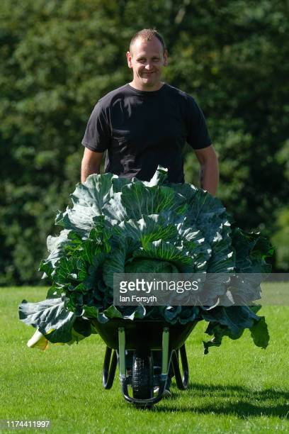 Craig Pearson from Mansfield poses during a press photo call with his winning cabbage of 274kg at the Harrogate Autumn Flower Show on September 13...