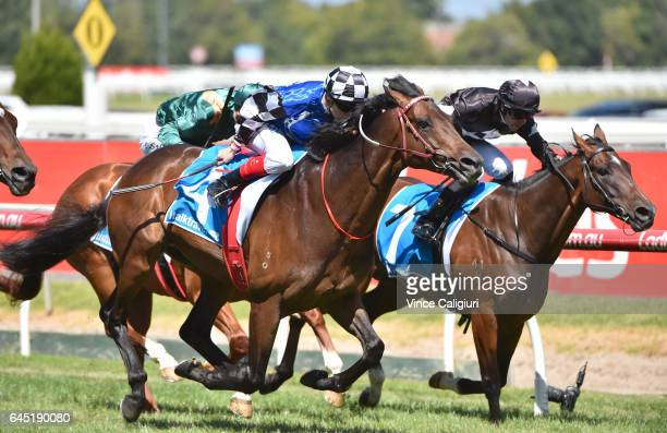 Craig Wiliams riding Tosen Stardom and Adam Hyeronimus riding Ecuador are defeated by Black Heart Bart in Race 5 Futurity Stakes during Melbourne...