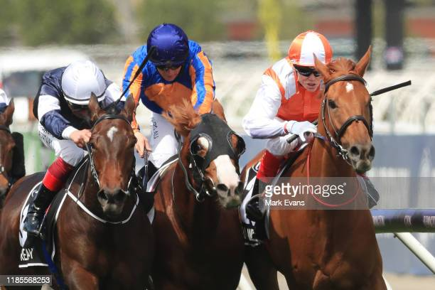 Craig Williams on Vow And Declare wins race 7 the Lexus Melbourne Cup during 2019 Melbourne Cup Day at Flemington Racecourse on November 05 2019 in...