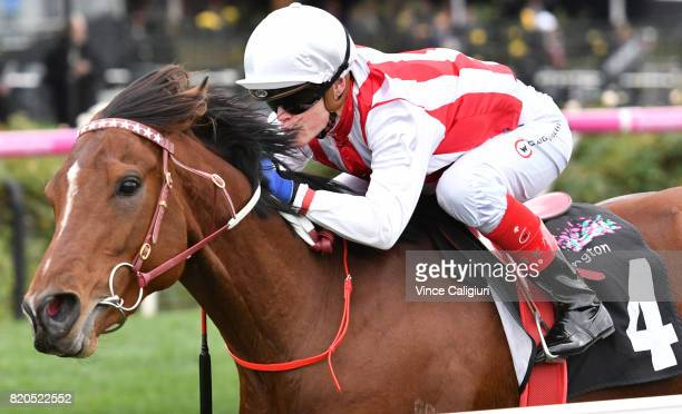 Craig Williams riding Anchor Bid wins Race 3 during Melbourne Racing at Flemington Racecourse on July 22 2017 in Melbourne Australia