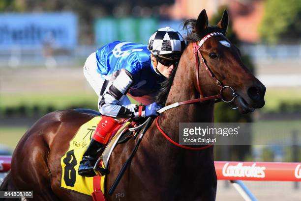 Craig williams riding Articus before Race 8 DatoTan Chin Nam Stakes during Melbourne Racing at Moonee Valley Racecourse on September 9 2017 in...
