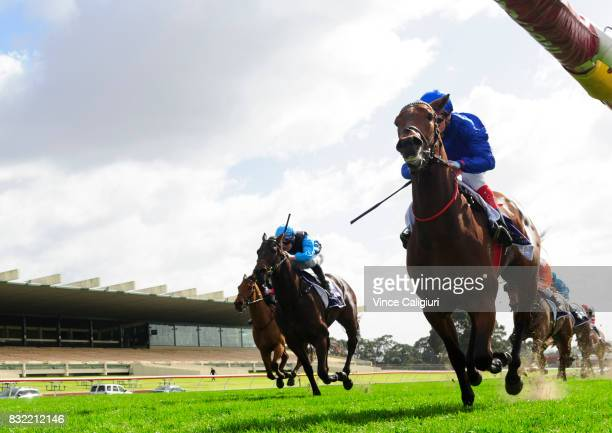 Craig Williams riding Esperance wins Race 1 during Melbourne Racing at Sandown Lakeside on August 16 2017 in Melbourne Australia