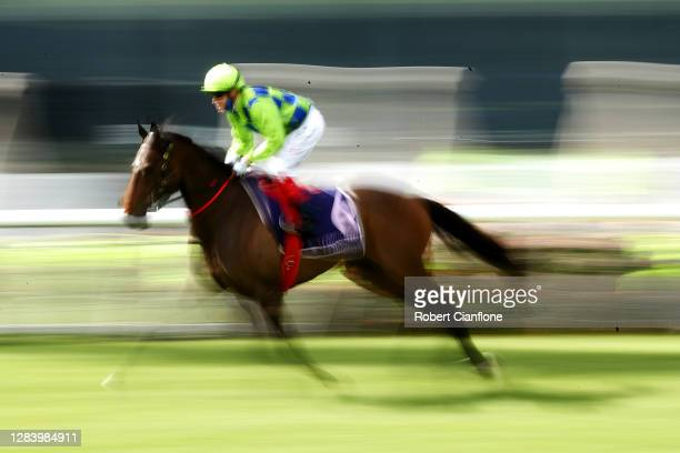 Craig Williams riding High Excalebration makes their way to the barriers ahead of race seven the Melbourne Cup Carnival Country Final during 2020...
