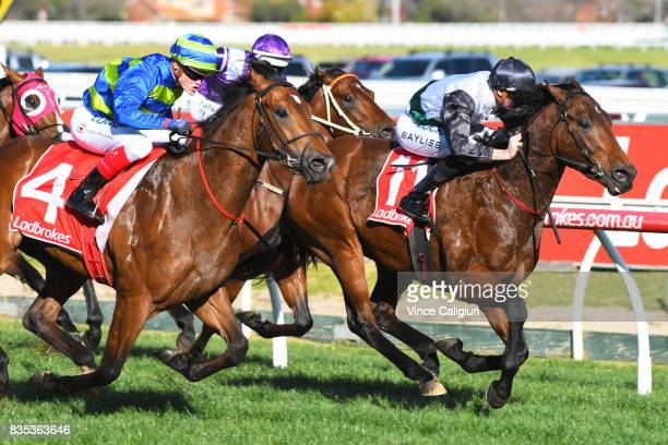 Craig williams riding Jukebox dives on the line to defeat Regan Bayliss riding Plutocracy in Race 6 Vain Stakes during Melbourne Racing at Caulfield...