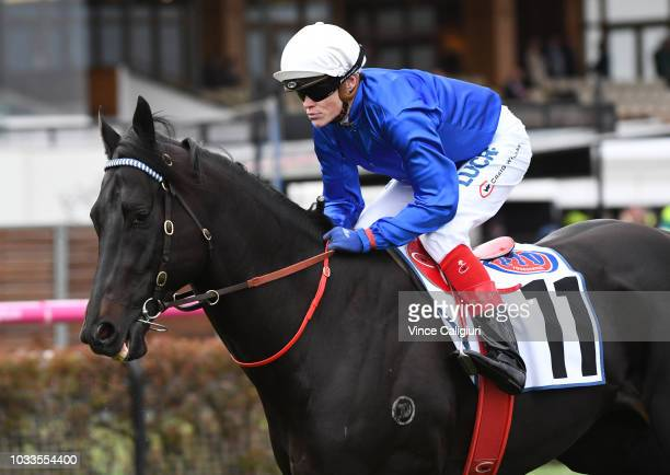 Craig Williams riding Kementari before Race 7 Makybe Diva Stakes during Melbourne racing at Flemington Racecourse on September 15 2018 in Melbourne...