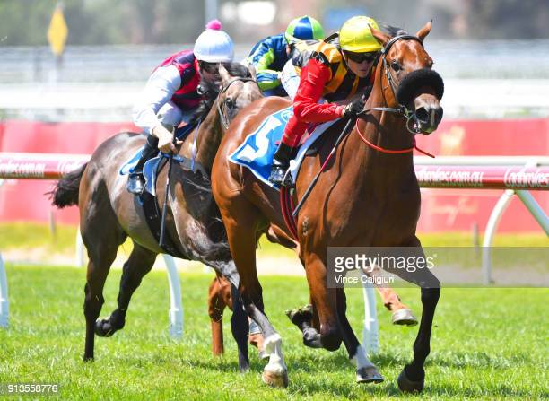 Craig Williams riding Kinky Boom wins Race 1 Inglis Premier during Melbourne Racing at Caulfield Racecourse on February 3 2018 in Melbourne Australia