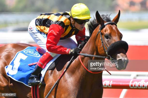 Craig Williams riding Kinky Boom wins Race1 Inglis Premier during Melbourne Racing at Caulfield Racecourse on February 3 2018 in Melbourne Australia