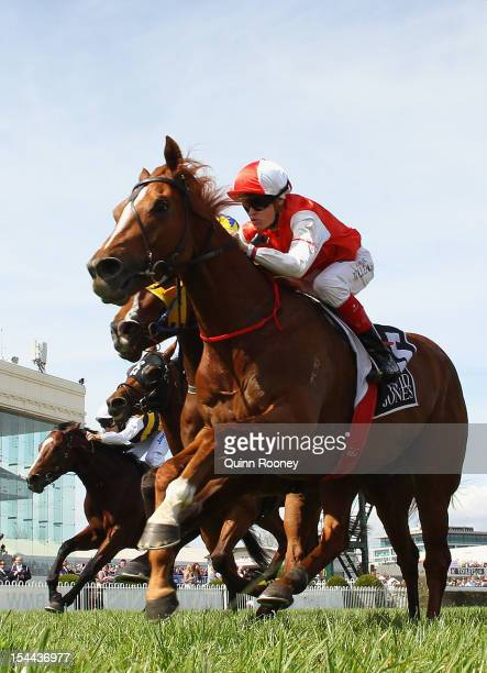 Craig Williams riding Lightinthenite crosses the line to win the David Jones Cup during Caulfield Cup Day at Caulfield Racecourse on October 20 2012...