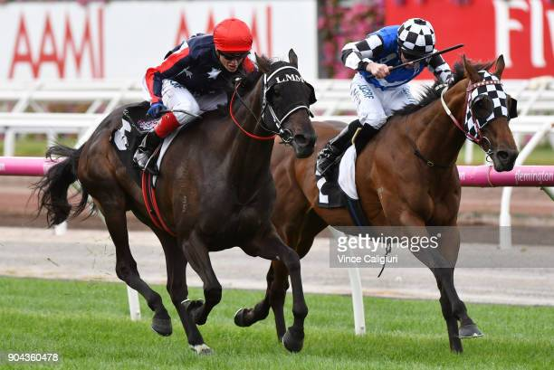 Craig Williams riding Pretty Punk defeating Articus in Race 2 during Melbourne Racing at Flemington on January 13 2018 in Melbourne Australia