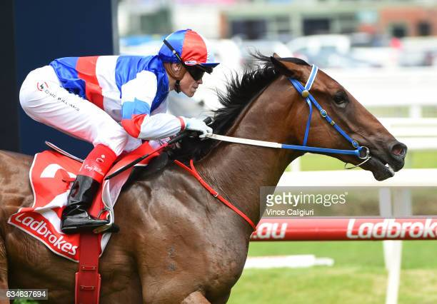Craig Williams riding Property winning Race 4 Blue Diamond Prelude during Melbourne Racing at Caulfield Racecourse on February 11 2017 in Melbourne...