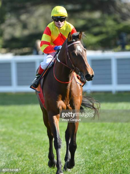 Craig Williams riding Shamport after winning Race 3 Victorian Breeders Vobis Gold Ingot during Melbourne Racing at Caulfield Racecourse on July 29...