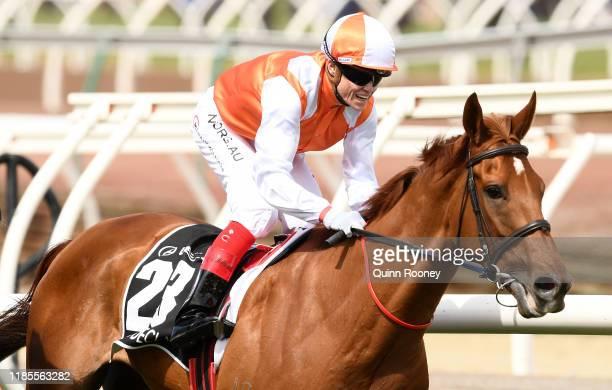 Craig Williams riding Vow and Declare wins the Lexus Melbourne Cup during 2019 Melbourne Cup Day at Flemington Racecourse on November 05 2019 in...