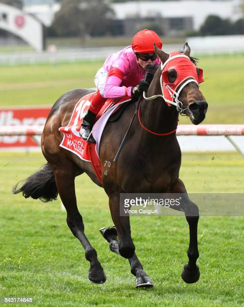 Craig Williams riding Wassergeist wins Race 2 during Melbourne Racing at Sandown Hillside on September 6 2017 in Melbourne Australia