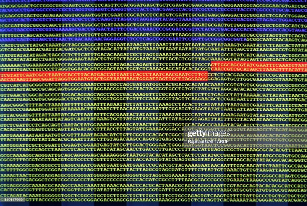 Craigh Venter Decipher The Human Genome In Rockville, United States In June, 2000. : News Photo
