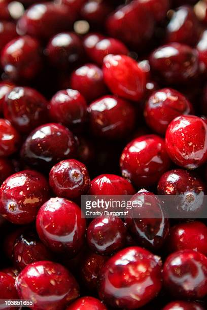 Cranberries close-up