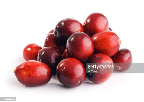 Cranberries Red Berry Fruit Pile Isolated on White Background
