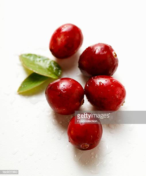 Cranberries with drops of water and two leaves