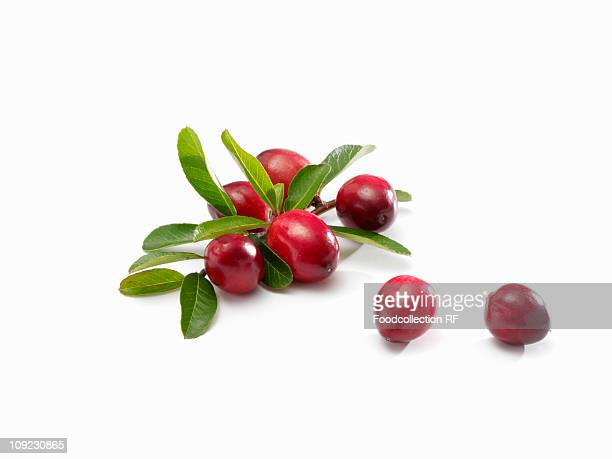 Cranberries with leaves on white background, close-up