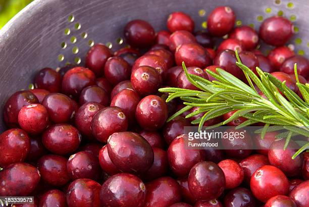 Cranberry Fruit Sauce & Rosemary Preparation, Christmas & Thanksgiving Holiday Food Background