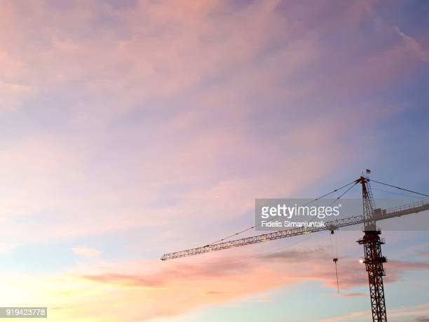 crane against blue sky at dusk in tokyo, japan - crane stock pictures, royalty-free photos & images