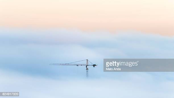 crane in a sea of fog - kran stock-fotos und bilder