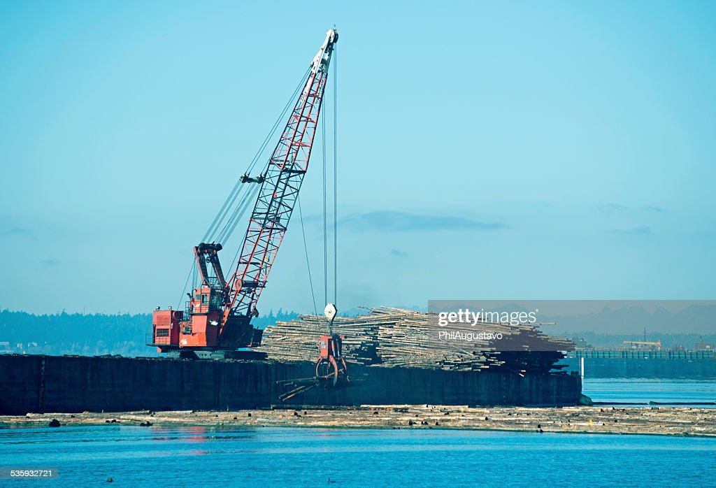 Crane lowering recently harvested logs into water in Tacoma WA : Stock Photo