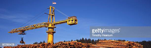 crane moving logs from large stack - timothy hearsum stockfoto's en -beelden