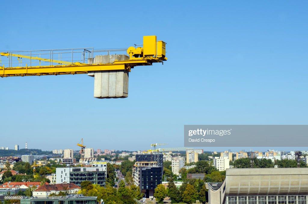 Crane : Stock-Foto